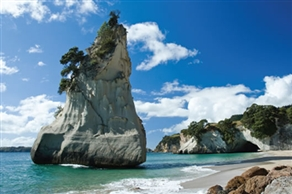 Request a Call Back Request about Moving to New Zealand