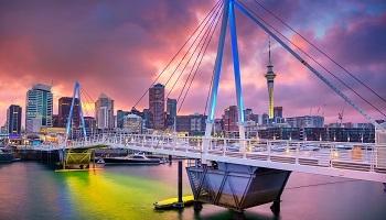 New Zealand Expat
