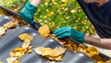 How to Embrace Autumn Cleaning